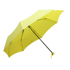 태풍주의보 우산&자외선 UV차단 양산 준비완료!